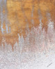 Gold Summer Woods II Poster Print by M. Mercado - Item # VARPDX10744NB
