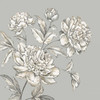 Botanical I Poster Print by Eva Watts - Item # VARPDXEW024A