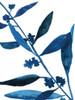 Sapphire Stems VIII Poster Print by Asia Jensen - Item # VARPDXJN149A