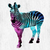 Zebra Elegance Poster Print by Sheldon Lewis - Item # VARPDXSLBSQ229B