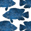 Navy Fish Collage Poster Print by Victoria Brown - Item # VARPDXVBSQ054A