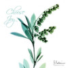 Choose Joy Lily of The Valley H12 Poster Print by Albert Koetsier - Item # VARPDXAK7SQ015A2