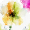 Watercolor Floral II Poster Print by Taylor Greene - Item # VARPDXTGSQ344B