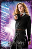 Harry Potter and the Half Blood Prince (Hermione) Poster Print (22 x 34) - Item # TIARP9279