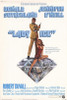 Lady Ice Movie Poster Print (27 x 40) - Item # MOVAH2295