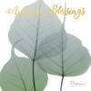 Autumn Rain Poster Print by Albert Koetsier - Item # VARPDXAK8SQ020B1