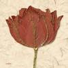 Red Tulip Poster Print by Diane Stimson - Item # VARPDXDSSQ208A1