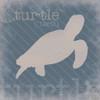 Turtle Definition Poster Print by Lauren Gibbons - Item # VARPDXGLSQ021D