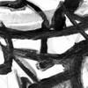 Abstract Jungle 2 Poster Print by Smith Haynes - Item # VARPDXSHSQ295B