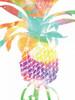 Tropical Pine Poster Print by Sheldon Lewis - Item # VARPDXSLBRC326A1