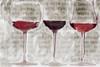 3 Wine Glasses Poster Print by Sarah Butcher - Item # VARPDXSRRC034A