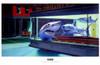 Night Sharks Movie Poster (17 x 11) - Item # MOV294820