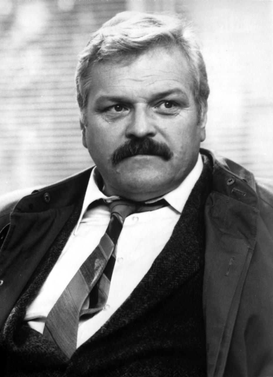 Image result for brian dennehy