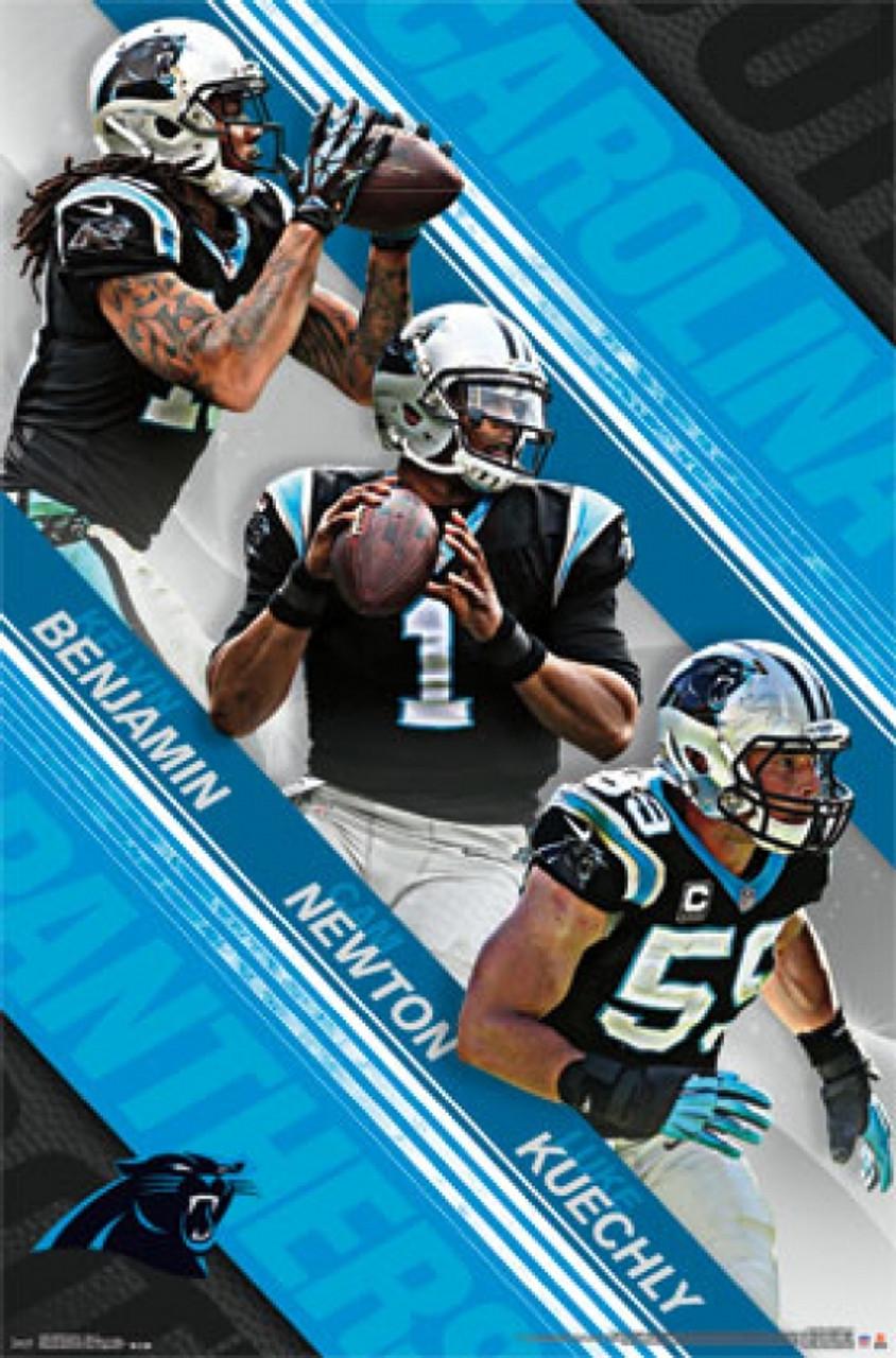 049ec175 Carolina Panthers - Team 2015 Poster Print - Item # VARTIARP14246