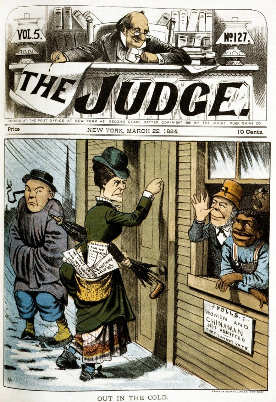 Image result for grant hamilton 1884 suffrage cartoon