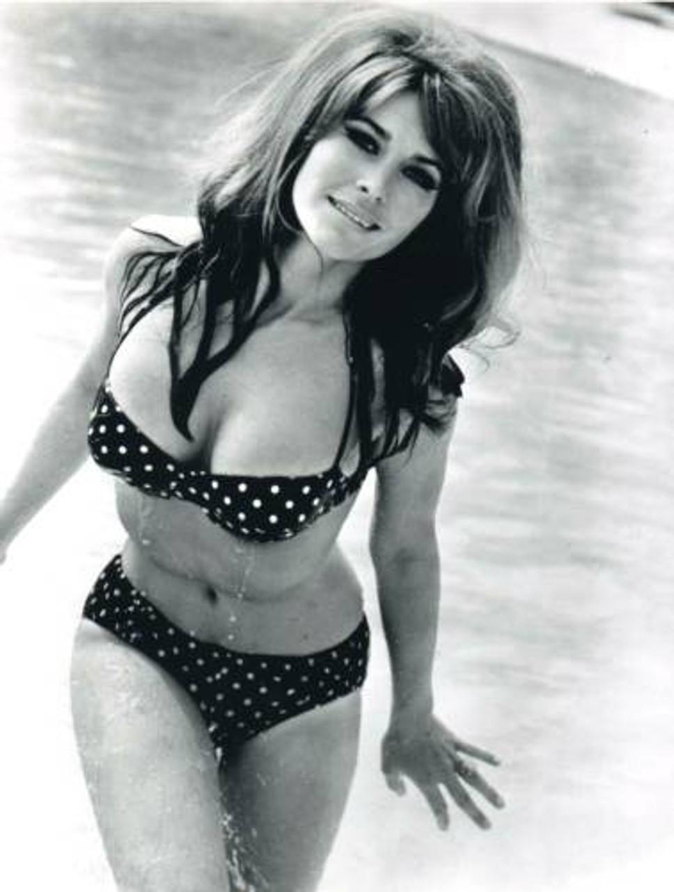Michele Carey - Black and White Polka Dot Bikini Photo Print (8 x 10) -  Item # DAP18874 - Posterazzi