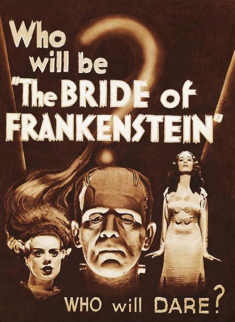 The Bride Of Frankenstein Movie Poster Masterprint - Item # VAREVCMCDBROFEC095