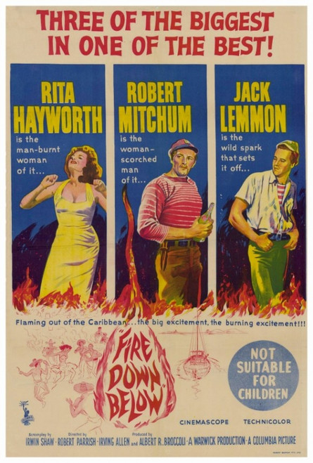 Fire Down Below Movie Poster Print (27 x 40) - Item # MOVIF3436