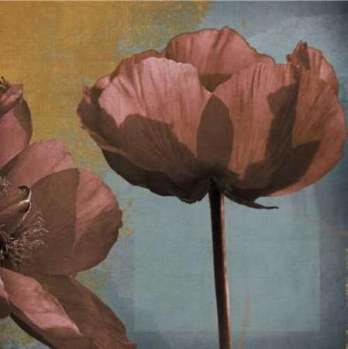 Blooming Jewels Poster Print by Robert Lacie - Item # VARPDXLRP118B