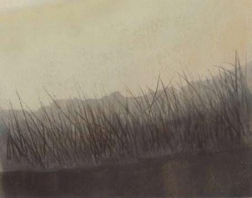 Marshland Grasses Poster Print by Sammy Sheler - Item # VARPDXSLR121