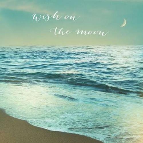 Moonrise Beach Inspiration Poster Print by Sue Schlabach - Item # VARPDX18854