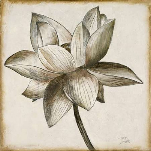 Sepia Lotus I Poster Print by Patricia Pinto - Item # VARPDX8782