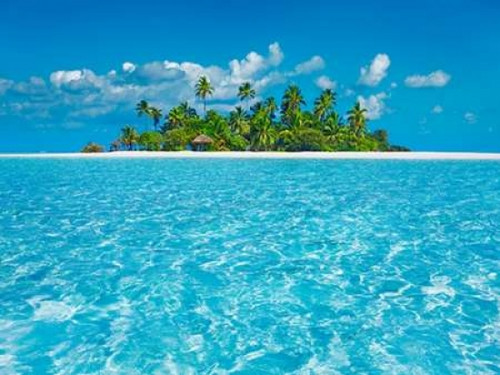 Tropical lagoon with palm island, Maldives Poster Print by  Frank Krahmer - Item # VARPDX3FK3155