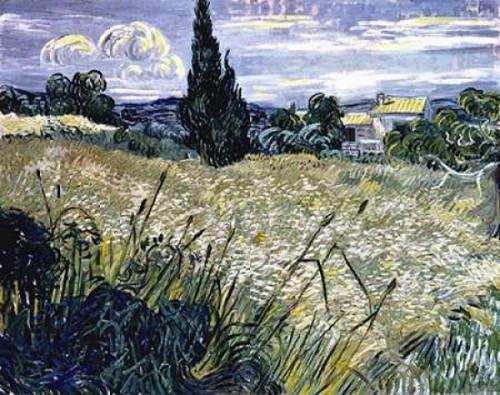 Landscape with Green Corn Poster Print by  Vincent Van Gogh - Item # VARPDX281278