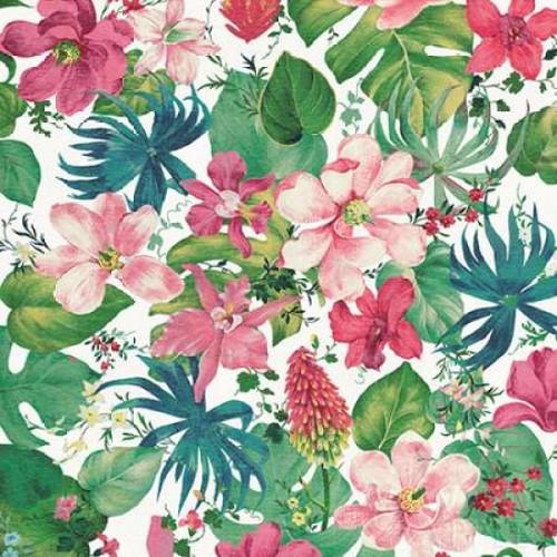 Tropical Dream Bright on White Poster Print by  Danhui Nai - Item # VARPDX24675