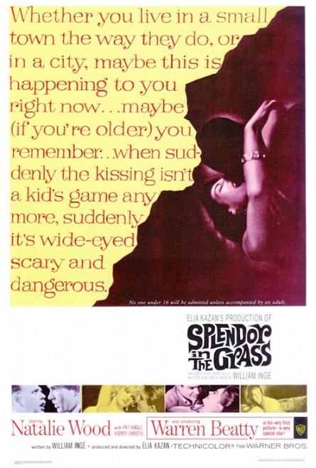 Splendor in the Grass Movie Poster Print (27 x 40) - Item # MOVIF7186