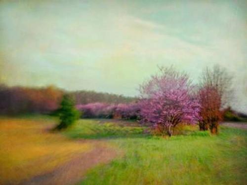 Nature Is Divine Poster Print by Dawn D. Hanna - Item # VARPDXH1232D