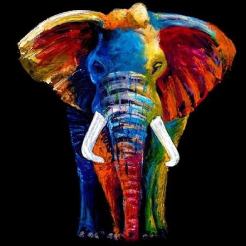 Great Elephant Poster Print by Clara Summer - Item # VARPDXINSUM108