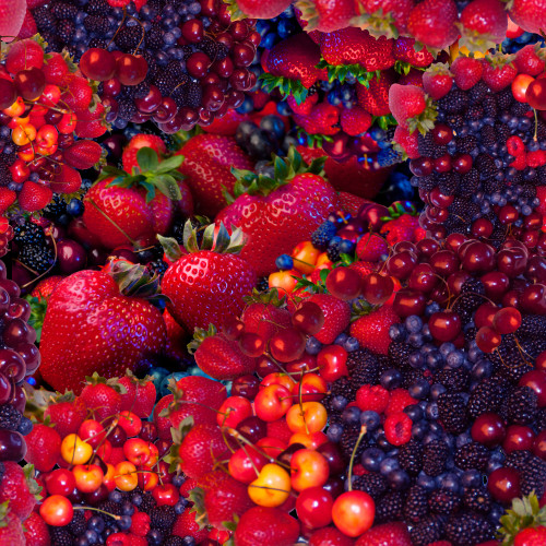Berry Repeat Pattern Poster Print by Alixandra Mullins - Item # VARMGL601051