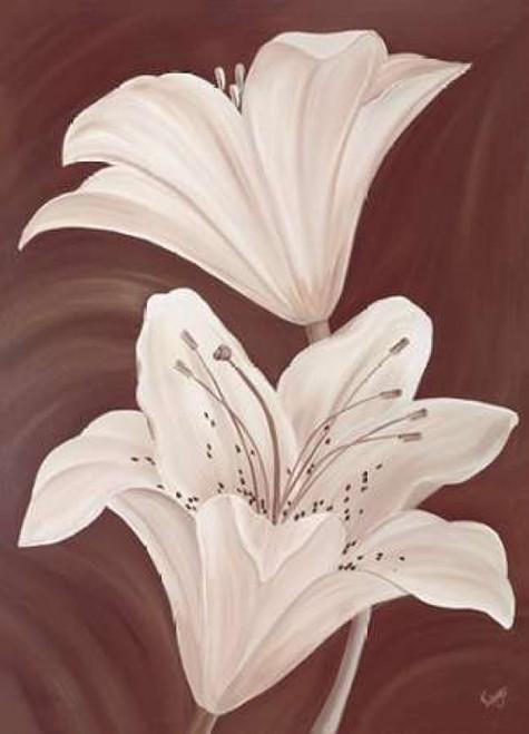 Chocolate Lillies Poster Print by Kaye Lake - Item # VARPDX85151