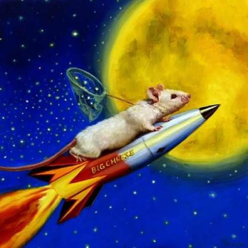 Dream Catcher Poster Print by Lucia Heffernan - Item # VARPDXH1246D