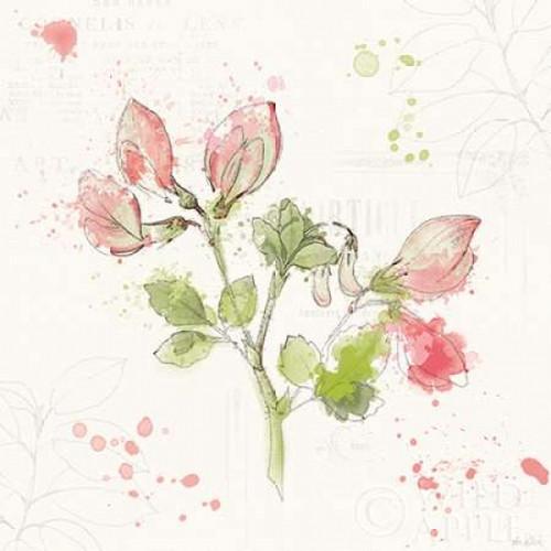 Floral Splash II Poster Print by Katie Pertiet - Item # VARPDX27182