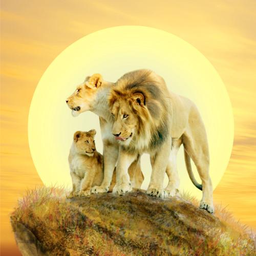 Daddy Lion Poster Print by Alixandra Mullins - Item # VARMGL601867
