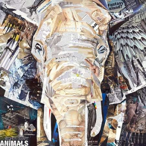 Elephants Gaze Poster Print by James Grey - Item # VARPDXINJG118
