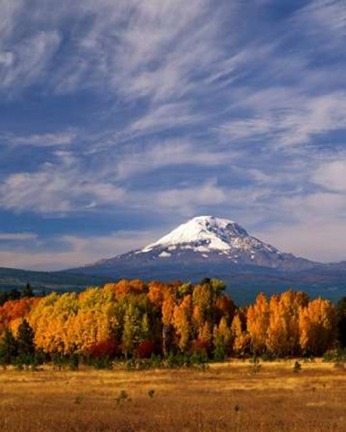 Mt. Adams IV Poster Print by Ike Leahy - Item # VARPDXPSLHY197