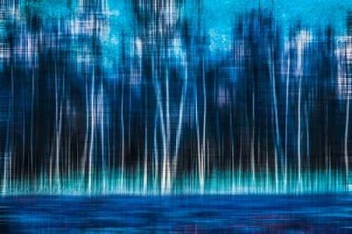 Mystic Forest Poster Print by Hannes Cmarits - Item # VARPDXC1146D