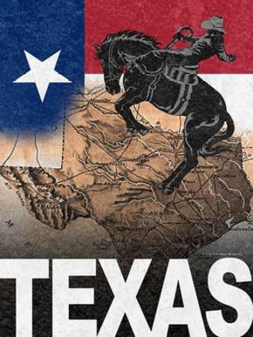 Texas Poster Print by Todd Williams - Item # VARPDXTWM343