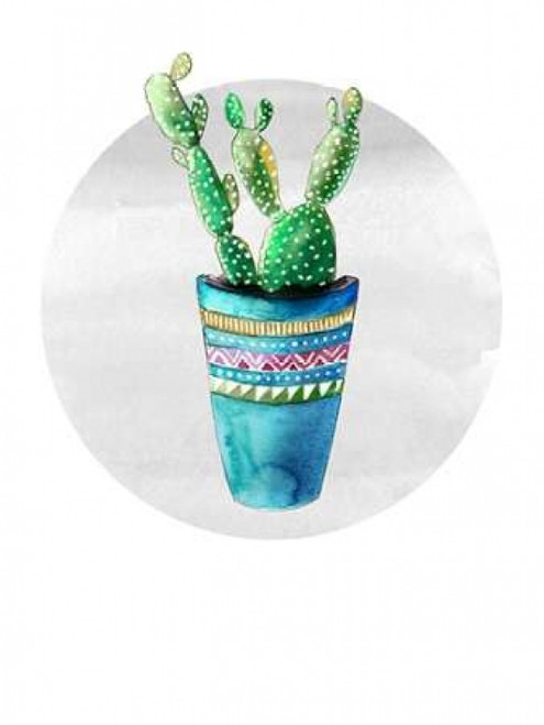 Mojave Cactus 3 Poster Print by Crystal Smith - Item # VARPDX671SMI1012