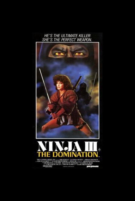 Ninja 3: The Domination Movie Poster Print (27 x 40) - Item # MOVGH2613