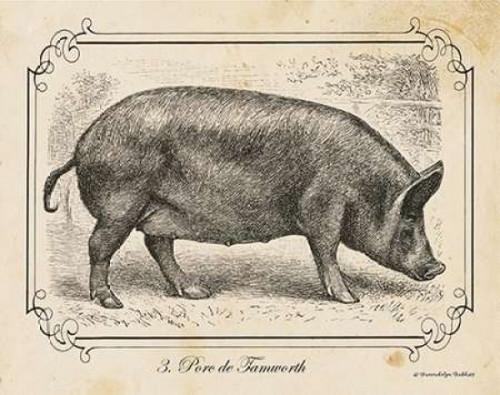 Farm Pig I Poster Print by Gwendolyn Babbitt - Item # VARPDXBAB085