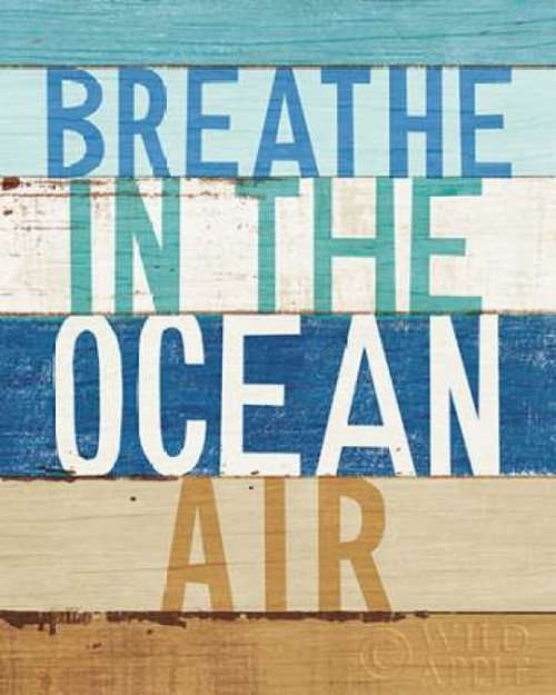 Beachscape Inspiration V Poster Print by Michael Mullan - Item # VARPDX23148