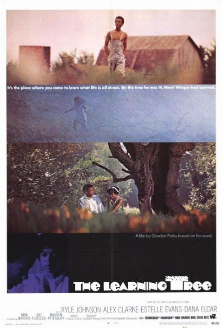 The Learning Tree Movie Poster Print (27 x 40) - Item # MOVCH1294