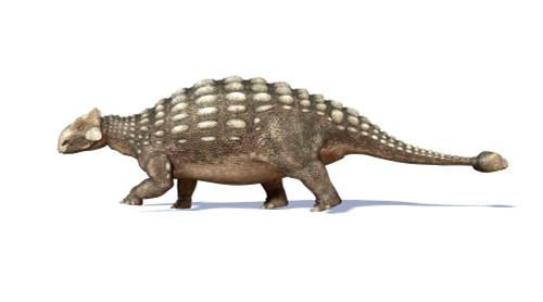 3D rendering of an Ankylosaurus dinosaur, side view Poster Print - Item # VARPSTVET600017P