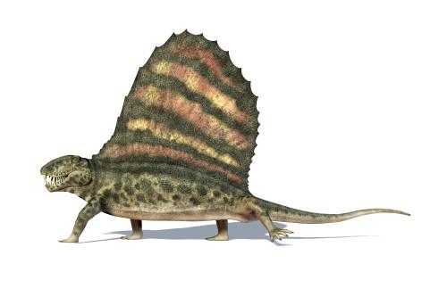 3D rendering of a Dimetrodon dinosaur, side view Poster Print - Item # VARPSTVET600016P