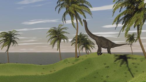 Large Brachiosaurus grazing Poster Print - Item # VARPSTKVA600135P