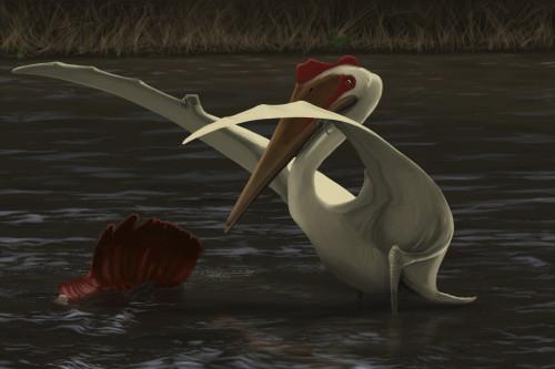 Quetzalcoatlus hunting for food in a prehistoric lake Poster Print - Item # VARPSTMDE100012P